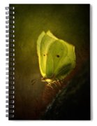 Yellow Butterfly Sitting On The Moss  Spiral Notebook