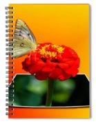 Yellow Butterfly Spiral Notebook