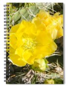 Yellow Cactus Blooms And Buds Spiral Notebook