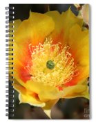 Yellow Cactus Flower Square Spiral Notebook