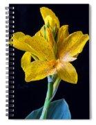 Yellow Canna Flower Spiral Notebook
