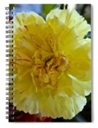 Yellow Carnation Delight Spiral Notebook