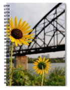Yellow Cone Flowers And Bridge Spiral Notebook