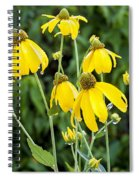 Yellow Cone Flowers Rudbeckia Spiral Notebook