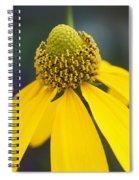 Yellow Coneflower Rudbeckia Spiral Notebook
