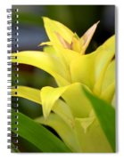 Yellow Cream Tropical Spiral Notebook