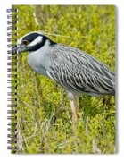 Yellow-crowned Night Heron Spiral Notebook
