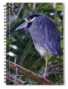 Yellow Crowned Night-heron Spiral Notebook