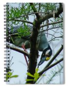 Yellow Crowned Night Heron Spiral Notebook