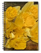 Yellow Daffodils And Texture Spiral Notebook