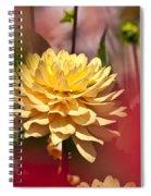 Yellow Dahlia 2 Spiral Notebook