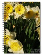 Yellow Day Lilies Spiral Notebook