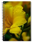 One Day Lily  Spiral Notebook