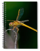 Yellow Dragonfly Spiral Notebook