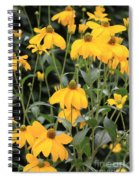 Yellow Echinacea Spiral Notebook