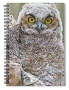 Yellow Eyes Spiral Notebook