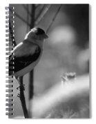 Yellow Finch B-w Spiral Notebook