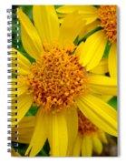 Yellow Flash Spiral Notebook