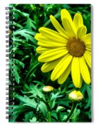 Yellow Flower Of Spring Spiral Notebook