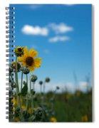 Yellow Flower On Blue Sky Spiral Notebook