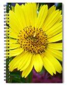 Yellow Glory Spiral Notebook