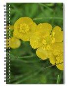 Yellow Glow Spiral Notebook