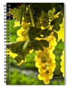 Yellow Grapes In Sunshine Spiral Notebook