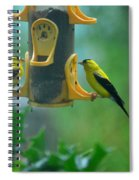 Yellow Grosbeak Duo Spiral Notebook