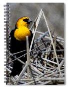 Yellow-headed Blackbird Spiral Notebook