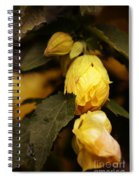 Yellow Hibiscus Late Afternoon Spiral Notebook
