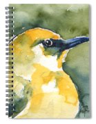 'akiapola'au - Hawaiian Yellow Honeycreeper Spiral Notebook