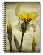 Yellow Iris - Vintage Colors Spiral Notebook