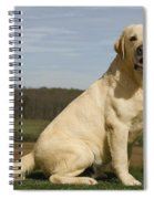 Yellow Labrador Dog Spiral Notebook