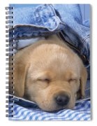 Yellow Labrador Puppy Asleep In Jeans Spiral Notebook