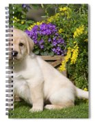 Yellow Labrador Puppy Spiral Notebook