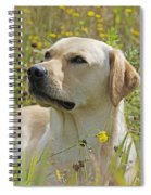Yellow Labrador Retriever Spiral Notebook
