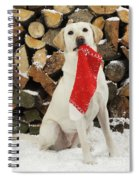Yellow Labrador With Stocking Spiral Notebook
