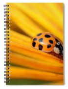 Yellow Lady - 1 Spiral Notebook