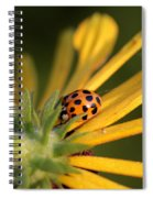 Yellow Lady - 2 Spiral Notebook