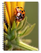 Yellow Lady - 4 Spiral Notebook