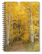 Yellow Leaf Road Spiral Notebook