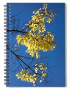 Yellow Leaves In Fall And Deep Blue Sky Spiral Notebook