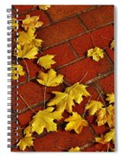 Yellow Leaves On Red Brick Spiral Notebook