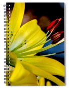 Yellow Lily Anthers Spiral Notebook
