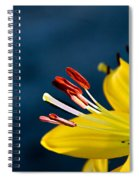 Yellow Lily Stamens Spiral Notebook