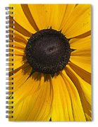 Yellow Macro Spiral Notebook