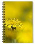 Yellow On Yellow Dandelion Spiral Notebook