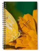 Yellow On Yellow Spiral Notebook