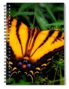 Yellow Orange Tiger Swallowtail Butterfly Spiral Notebook