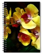 Yellow Orchids Shadow And Light Spiral Notebook